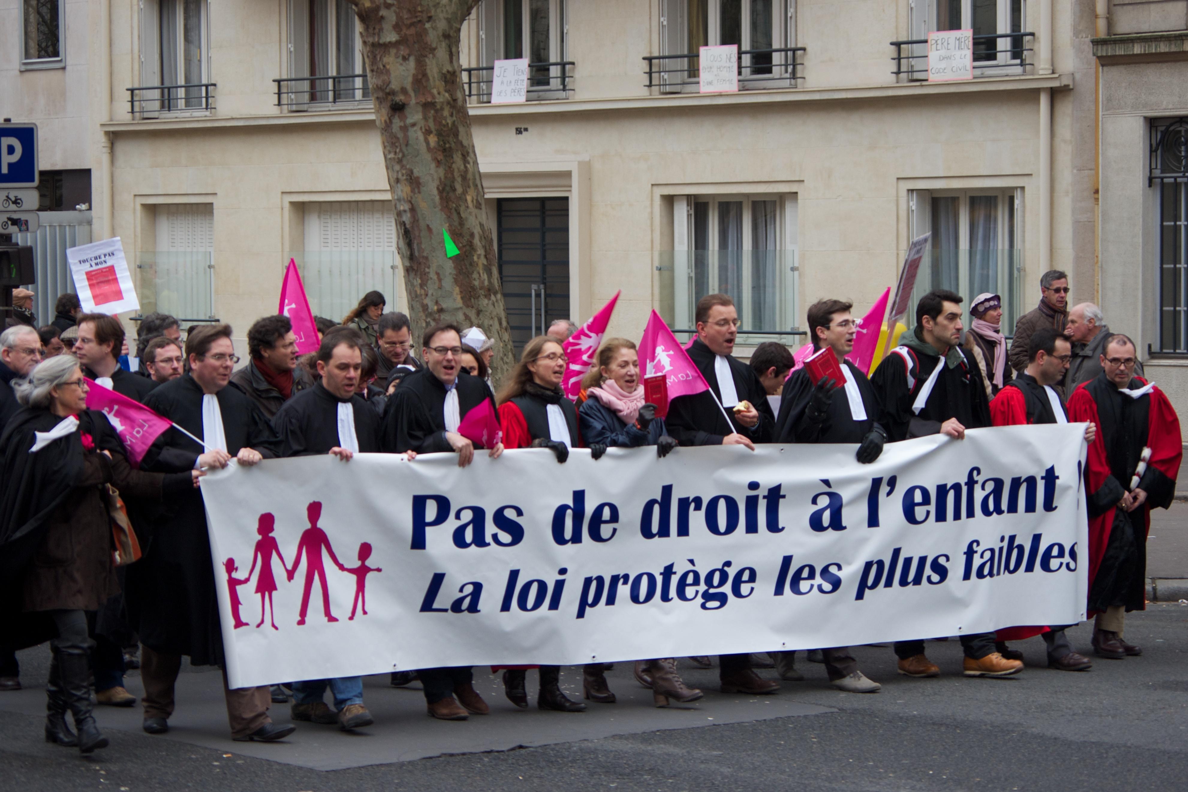 Des sympathisants de la Manif pour Tous se rassemblent contre l'ouverture de la PMA.